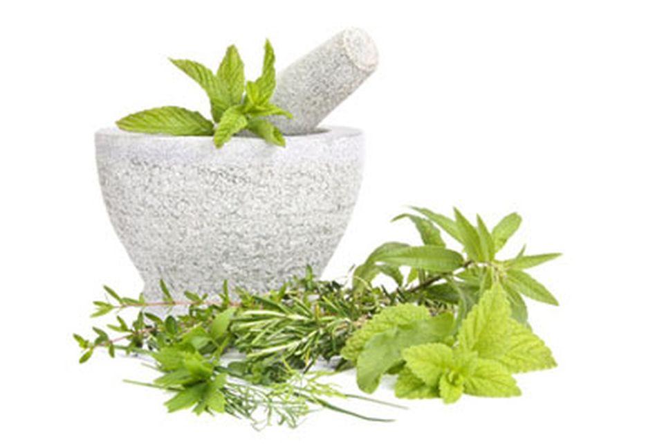 Naturopathie techniques phytothérapie et aromathérapie